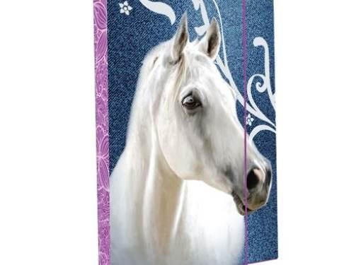 Box A5 Kôň